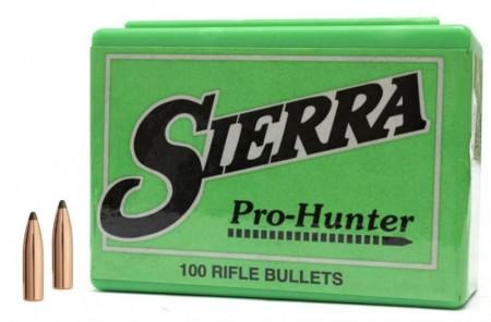Sierra Pro-Hunter